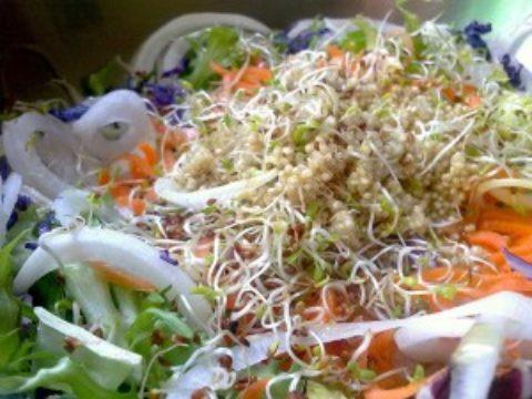 キヌアには各種栄養成分がバランスよく含まれている